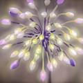 Fireworks  Wildflowers by Peggy Franz