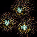 Fireworks - Yellow Spirals by Black Brook Photography