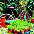 First Bike by Johnnie Stanfield