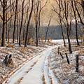 First Day Of Winter by Jake Vandenbrink