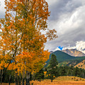 First Fall Colors In Rocky Mountain National Park by Dan Sproul