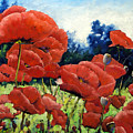 First Of Poppies by Richard T Pranke