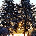 First Snow by J R Sanders