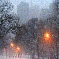 First Snow by John-Marc Grob