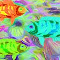 Fish 3 by Caito Junqueira