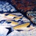 Fish And Shellfish by Pat Snook