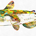 Fish Art Catfish by Dan Sproul