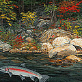 Fish Art Jumping Silver Steelhead Trout Art Nature Artwork Giclee Wildlife Underwater Wall Art Work by Baslee Troutman