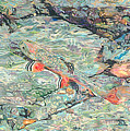 Fish Art Trout Art Brook Trout Brookie Artwork Nature Underwater Wildlife Creek Art River Art Lake by Baslee Troutman