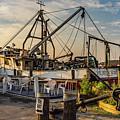 Fish Market by Sean Mills