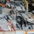 Fish Market by Yury Bashkin