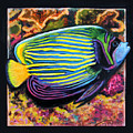 Fish Number 2 by John Lautermilch