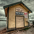 Fish Shed by Wayne Sherriff