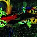 Fish Water Flowers 1 by Phyllis Spoor