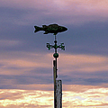 Fish Weather Vane At Sunset by Charles Harden