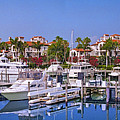 Fisher Island Miami Private Marina by David Zanzinger