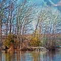 Fisherman On Burke Lake by Suzanne Stout