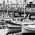 Fishermans Wharf by Mick Burkey