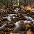 Fishhook Creek Waterscape Art By Kaylyn Franks by Kaylyn Franks