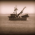 Fishing Boat In Monterey Bay by Joy Patzner