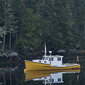 Fishing Boat Moored On The Water by Dan Friend