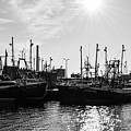 Fishing Boats by Andrea Anderegg