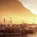 Fishing Boats At Dawn Kalk Bay South Africa by Neil Overy