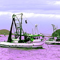 Fishing Boats At Pearl Beach 1.0 by Giro  Tavitian