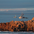 Fishing Boats On Monterey Bay by Charlene Mitchell