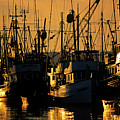 Fishing Boats Sunset Light by Jim Corwin