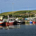 Fishing Fleet At Dingle, County Kerry, Ireland by Aidan Moran