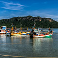 Fishing Harbour by Adrian Evans