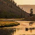 Fishing On Smokey Madison River by Yeates Photography