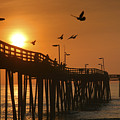 Fishing Pier At Sunrise by Steven Ainsworth
