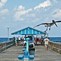 Fishing Pier With Flying Pelican by Allan Einhorn