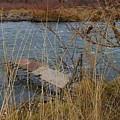 Fishing Platform  by Carol Groenen