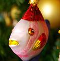 Fishy Ornament by Jera Sky