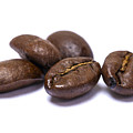Five Coffee Beans Isolated On White by Donald  Erickson