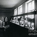 Five Dogs Undergoing Pavlovs by Wellcome Images