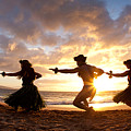 Five Hula Dancers On The Beach by David Olsen