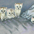 Five Kitties by Cori Solomon
