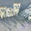 Five Kitties by Cori Solomon
