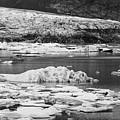 Fjallsarlon Glacier Lagoon Iceland 2348 by Bob Neiman