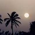 Floridian Sunrise by Jeffery L Bowers