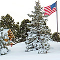 Flag And Snowy Pines by Dawn Key