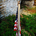 Flag Day by Joan  Minchak