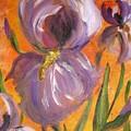 Flag Iris by Yvonne Ayoub