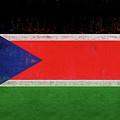 Flag Of  South Sudan Grunge by Roy Pedersen