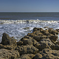 Flagler Beach 3 by Steve Gravano