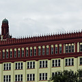 Flagler College by D Hackett